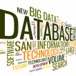 Database concept in word cloud — Stock Photo #35717883