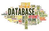 Database concept in word cloud — Foto de Stock