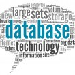 Database concept in word cloud — Stock Photo