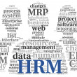 Stock Photo: HRM Humresource management concept in tag cloud