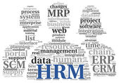 HRM Human resource management concept in tag cloud — Stock Photo