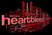 Heartbleed attack in word tag cloud — Stock Photo