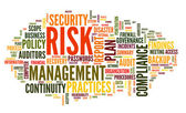 Risk and compliance in word tag cloud — Stock Photo