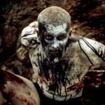 Zombie — Stock Photo #30594515