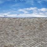 Roof tiles — Stock Photo #13564131