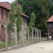 Auschwitz - Stock Photo