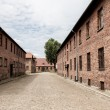 Auschwitz — Stock Photo #13719756
