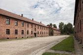 Auschwitz — ストック写真