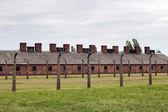 Auschwitz — Foto Stock