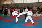 Campeonato taekwondo — Foto Stock