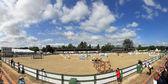 Скачок лошади — Стоковое фото
