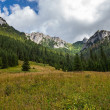 Tatra Mountains landscape — Stock Photo #19740047