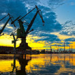 Great Cranes — Stock Photo