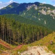 Tatra Mountains landscape — Stock Photo #22169863