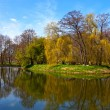 Stock Photo: Pond in park