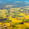 Aerial view of farm fields — Stock Photo