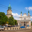 Foto de Stock  : Cathedral in Lublin