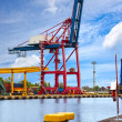 Gantry cranes — Stock Photo
