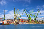 Big cranes and dock — Stock Photo