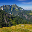 Poland mountains — Stock Photo