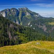 Stock Photo: Poland mountains