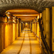 Underground corridor — Stock Photo