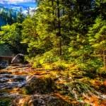 Mountain brook in sunrise light — Stock Photo #40577061