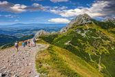 On a mountain trail — Stock Photo
