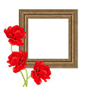 Frame with tulips — Stock Photo