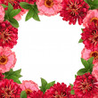 Floral frame — Stock Photo #35273561