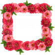 Square floral frame — Stock Photo