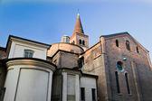 Basilika der Sant'Eustorgio — Stockfoto