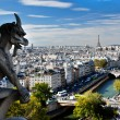 Paris panorama, France. Eiffel Tower, Seine river — Stock fotografie