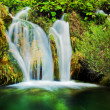 Stock Photo: Waterfall in forest. Crystal clear water.