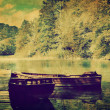 Lake and two boats in forest. Retro — Stock Photo