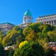 Buda Castle in Budapest, Hungary — Stock Photo