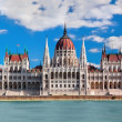 Hungarian parliament in Budapest, Hungary — Stock Photo #18238961