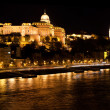 Buda Castle by Danube river. Budapest, Hungary — Stock Photo