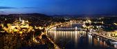 Budapeste, hungria. vista da colina gellert — Fotografia Stock
