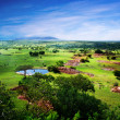 Savanna in bloom, in Tanzania, Africa panorama — Stock Photo