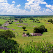 Savanna landscape in Serengeti, Tanzania, Africa — Stock Photo