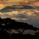 Mount Kilimanjaro. Savanna in Amboseli, Kenya — Stock Photo