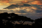 Mount Kilimanjaro. Savanna in Amboseli, Kenya — Foto Stock