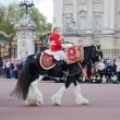 LONDON - MAY 17: British Royal guards riding on horse and perform the Changing of the Guard in Buckingham Palace — Stock Photo