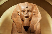 Human-faced lion-body egyptian tombstone on display in the louvre museum — Stock Photo