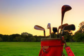 Golf equipment. Professional golf clubs at sunset — Stock Photo