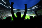 Football, soccer fans support their team and celebrate — Stockfoto