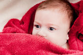 Lovely 3 months baby lying on bed covered with red blanket. — Stock Photo