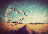 Heart shape made of colorful butterflies on vintage field background — Stock Photo