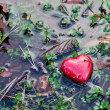 Red heart in water puddle on marshy grass, moss. Love, Valentine's Day. — Stock Photo